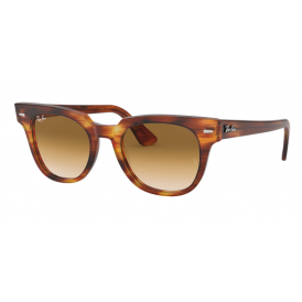 Ray-Ban Meteor - Striped Havana Tortoise